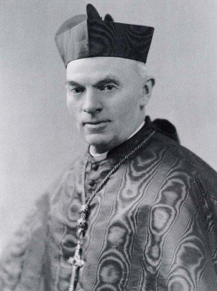 Cardinal Verdier portrait